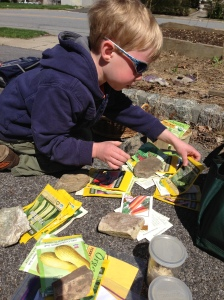 Levon did a great job sorting our seed collection.  Our vege selection this season will be determined mostly by what we have accumulated in recent years.