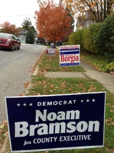 Lawn signs 2013